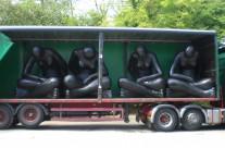 Angels – Somerset Carnival Circuit 2010